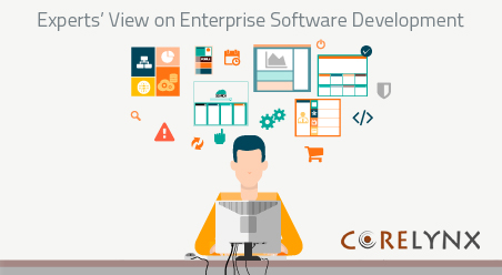 Experts' View on Enterprise Software Development